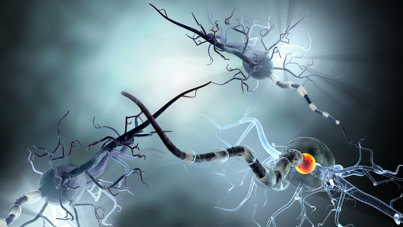 Neurinox Scientists Find Oxygen Radicals Play Dual Role in Neurodegenerative Diseases