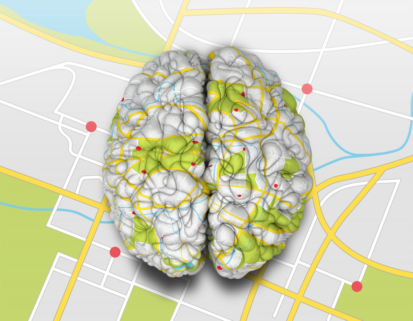 A map of the mouse brain, is, very much like a road map, a key to focus on the exact part that is not functioning in conditions such as Huntington's disease.