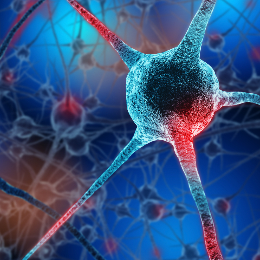 Protein May Prevent Neuron Death in Huntington's Patients, Study Finds