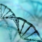 gene mutation and HD prognosis