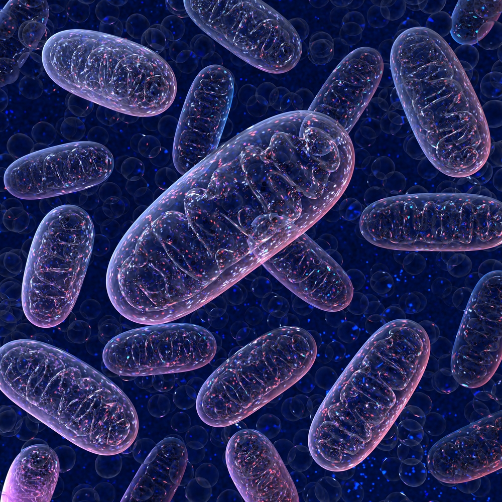 Researchers Identify Mechanism to Prevent Toxic Accumulation of Proteins in Mitochondria