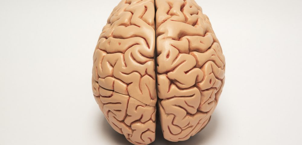 #AANAM – Laquinimod Reduces Brain Atrophy in Early Huntington's, Study Shows