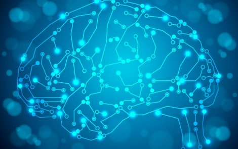 HTT Mutations Seen to Cause Extensive Brain Remodeling, Affecting Motor and Cognitive Skills