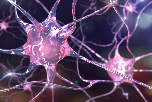 Mutations Linked to Huntington's Increase Nerve Cells' Resistance to High Levels of Manganese, Study Finds