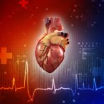 protein linked to heart problems