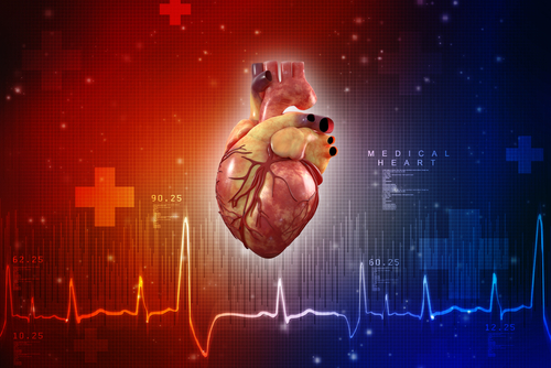 Defective Protein in Huntington's Linked to Heart Dysfunction in Mouse Study