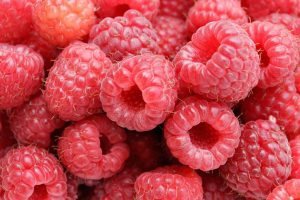 salidroside in raspberries